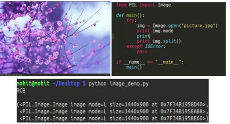 Working with Images in Python - GeeksforGeeks