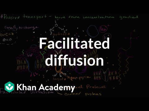 Facilitated diffusion by cmrcarr - Teaching Resources - TES