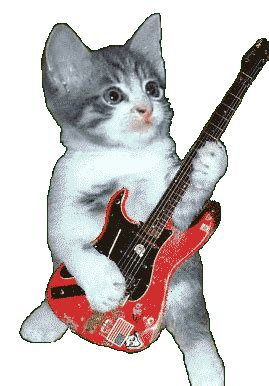 Animals with guitar - Funny Animated GIFs   Hard-guitar