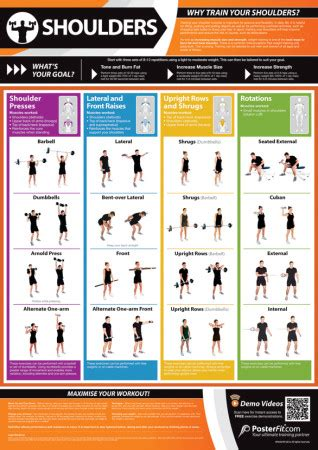 Shoulder Exercises | Gym and Fitness Poster