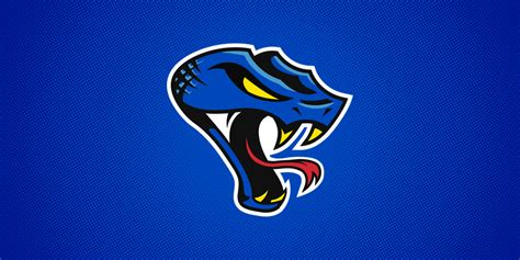 Columbus Cottonmouths bring fresh look to SPHL — icethetics