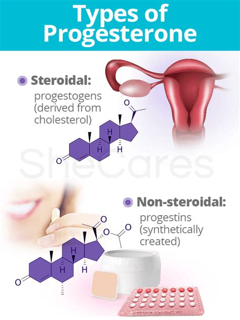What is Progesterone: Definition & Types   SheCares