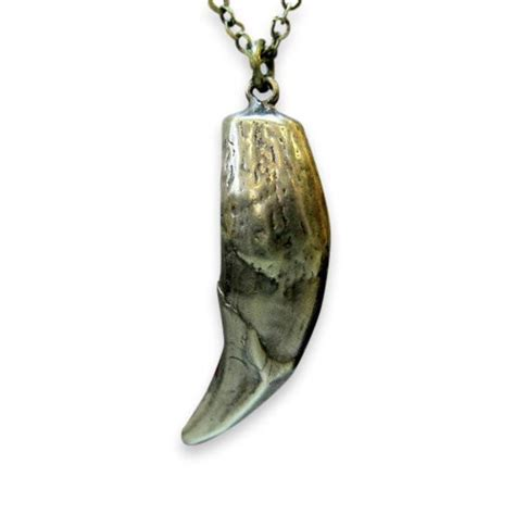 Wolf Tooth Necklace | Moon Raven Designs
