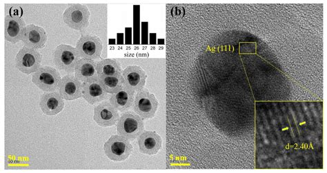 Nanomaterials | Free Full-Text | Ag@SiO2 Core-shell