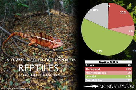 CHART: The world's most endangered reptiles