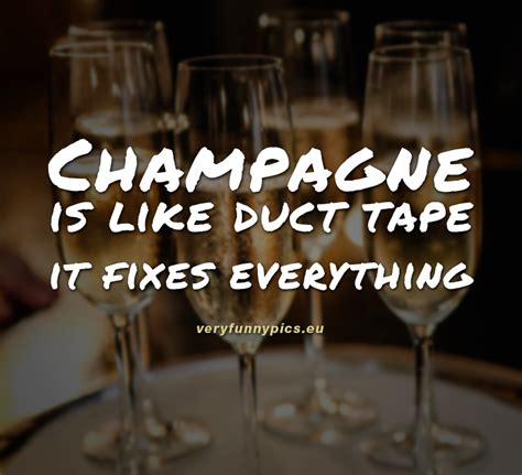 Champagne is the answer | Very Funny Pics